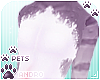 [Pets] Jura   andro top