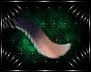 [K] Setra Tail V4
