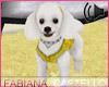 [FC] My Paris Poodle Pet