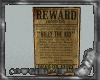 Wanted poster v1