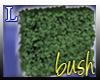 Bush 4 garden