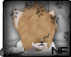 [NF]Cur!ousFox Hair