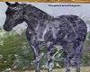 Horse Fountain
