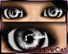 Halloween Eyes-Black