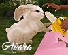 Feeding Sweet Bunny