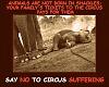 Stop Elephant Torture