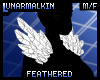 FeatheredShoulderMesh