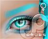 TP Brows - CYAN