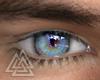 ◮ Cobalt Eyes  f/mesh