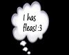 I has fleas! thought