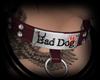 Bad Dog Collar Male