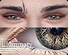 ▲ Eyes - Hazel. Male