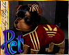 I~Yorkie*Sport*Red&G.Pet
