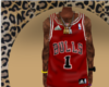 Bulls Jeresy