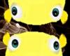 Gisela Pet Yellow