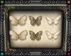 {D}ButterflyFrame 2