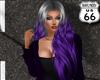 SD Jennifer Grey Purple