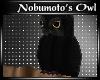[AS] Nobumoto's Owl
