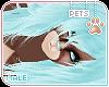 [Pets] Dexi | hair v1