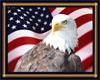 USA Eagle wall hanger