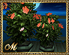 :ma: RESORT PLANTS