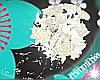 PP Diva Bridal Bouquet