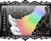 |Pastel Rainbow Socks|