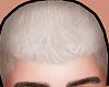 五 Jacob. Blonde