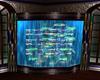 ~1/2~ EC Fish Tank