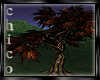 ch:Autumn Maple Tree
