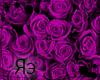 R MobileBackground Rose2