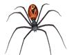 ~D~ Keeper Spider V.1