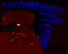Blue moehawk
