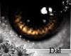 `Ⓓ`Doll Eyes 2