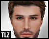 [TLZ]Classic hair - brow