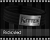 >R< Kitten Collar