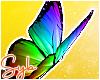 Rainbow Butterflies x