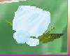 [tguu]Rose Pin Lt Blue