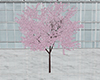 [NR] Sakura Avatar