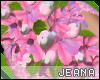 !J! Wedding Flowers
