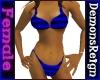 Bikini -Blue/Blk Striped