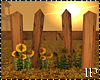 Wood Fence & Sunflowers