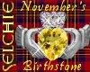 !!S Birthstone Nov.