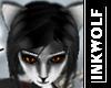 Iditarod Husky Skin