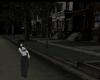 ~D~ Night Street