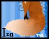 [iza] Red Fox tail 1