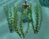 Sea Weed Swaying Animate