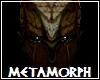 Metamorph Skin