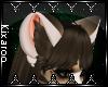 [K] Ollie Ears V2