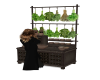 herb potions cabinet